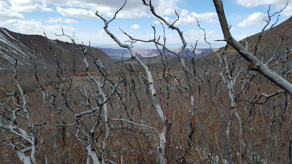 Above Moab Utah 24.03.162016-03-25 15.59.21