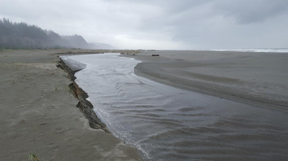 Gold Bluffs Beach Prairy Creek Redwood California 14.03.162016-03-14 14.32.03 copy