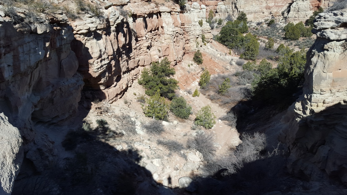 Petrified Forrest Hike Highway 12 23.03.162016-03-23 16.11.34