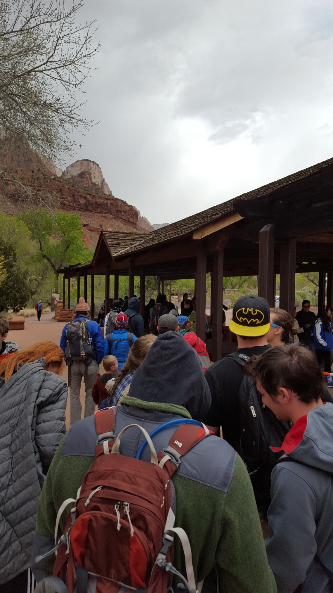 Springville Zion National Park 22.03.16Wildcat Trail Zion National Park 21.03.1620160322_122156