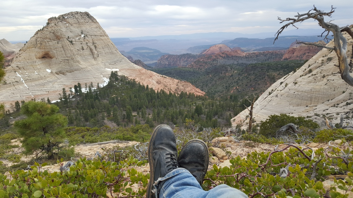 Wildcat Trail Zion National Park 21.03.162016-03-21 17.16.26