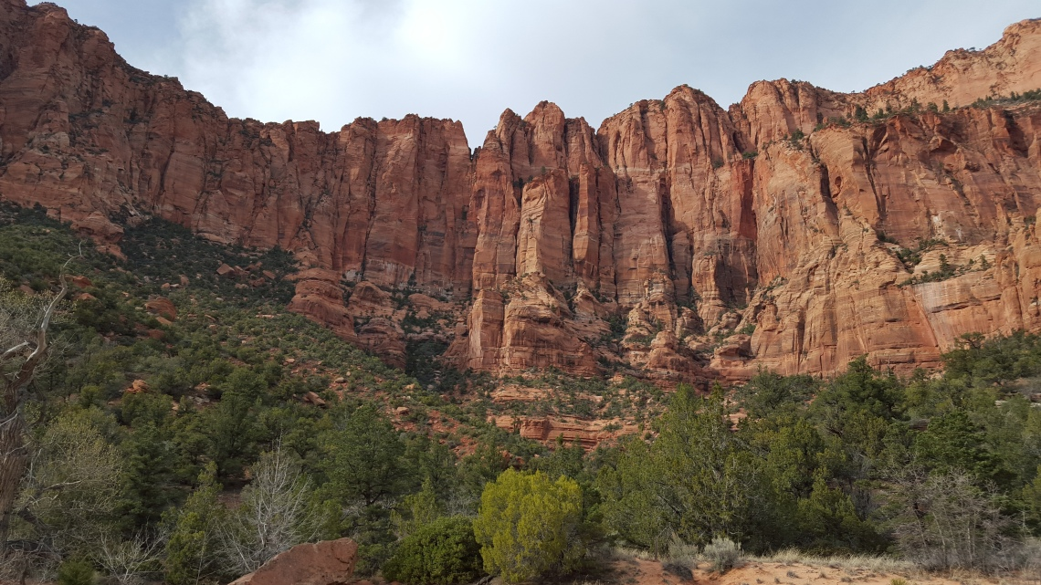 Zion National Park Kolob Canyon Trail 20.03.1620160320_165214