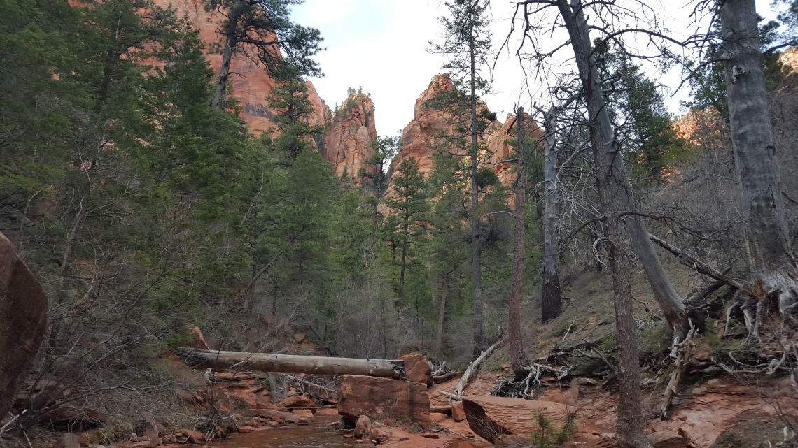 Zion National Park Kolob Canyon Trail 20.03.1620160320_173248