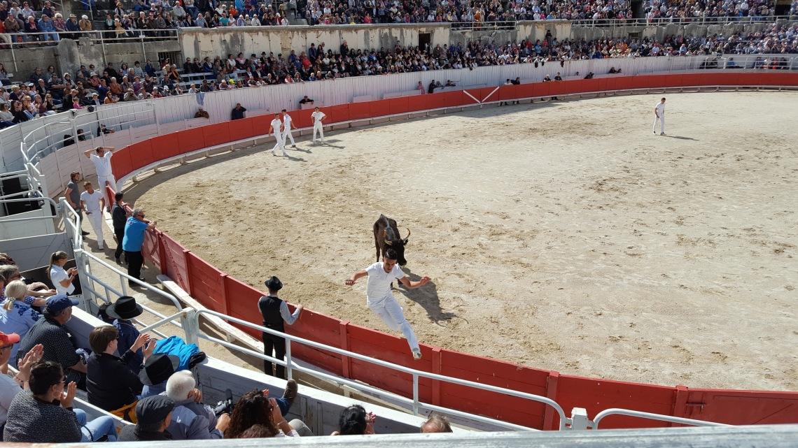 Arles Protectors of the Bulls Festival France 01.05.1720170501_162837